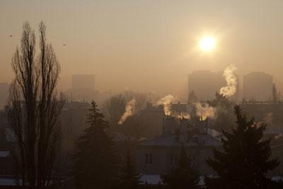 Domestic Biomass Regulations