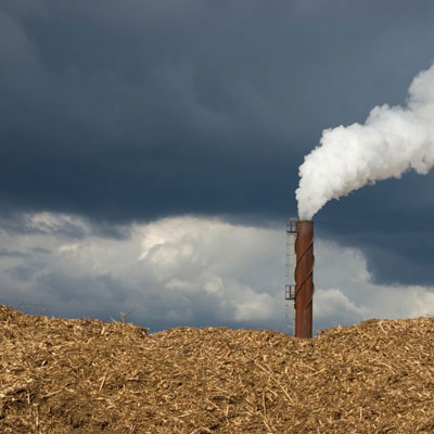 Large scale biomass regulations